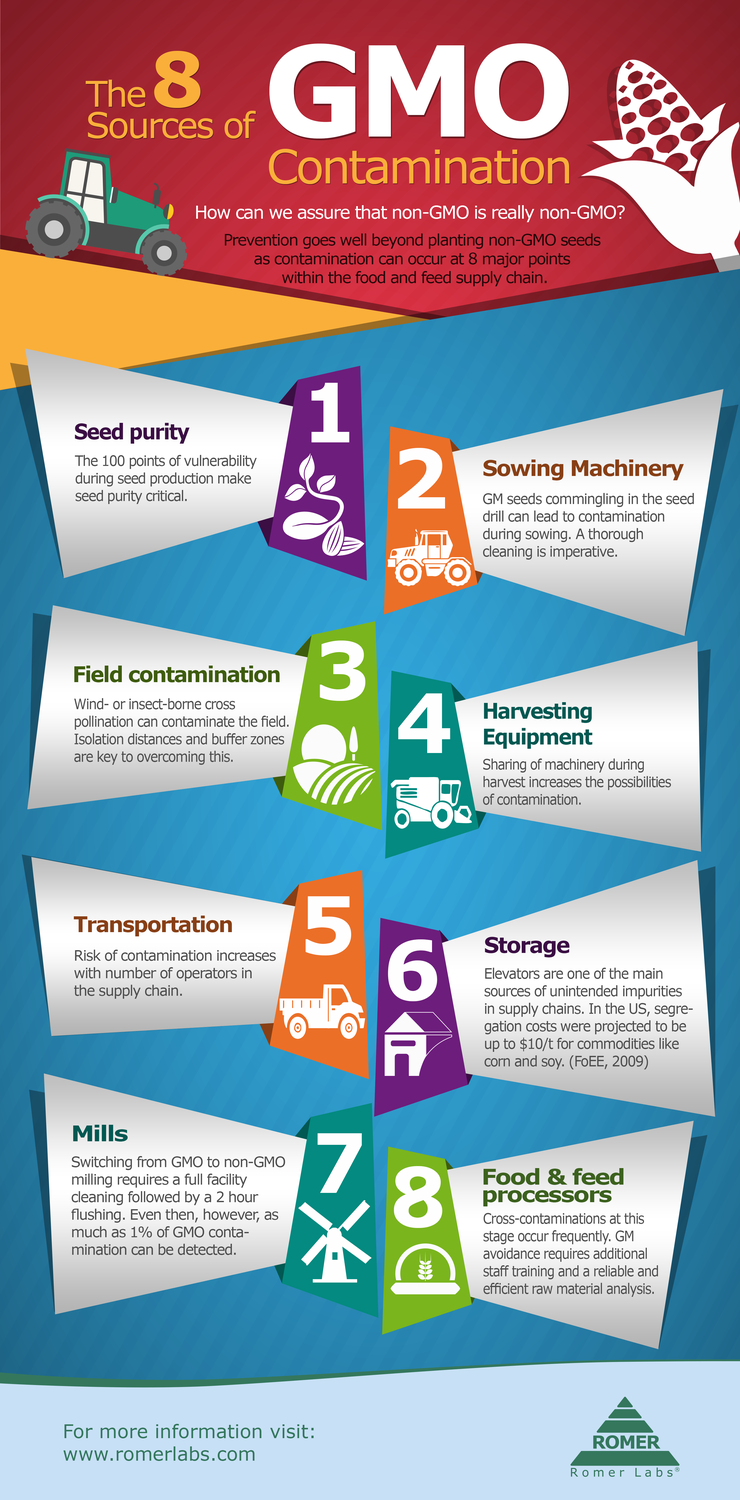 Prevention Of Cross Contamination In Food Service